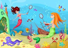 życia morze Zdjęcie Royalty Free
