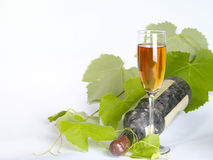 życia wino stary spokojny Fotografia Stock