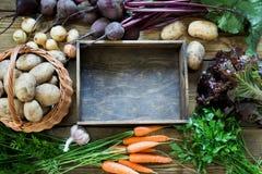 życie ciągle jesieni Świeża spadku warzyw, marchewki, beetroot, cebuli, czosnku, kartoflanej i drewnianej taca na stole, kosmos k Obraz Royalty Free