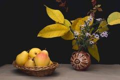 życie ciągle jesieni Fotografia Stock