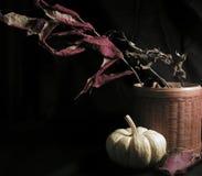 życie ciągle jesieni obraz stock