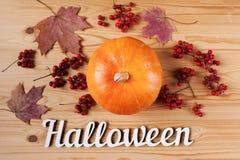 życie ciągle jesieni Bania z kwiatami, liśćmi klonowymi i Halloweenowym wakacyjnym tekstem, Odgórny widok Zdjęcie Stock