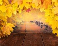 życie ciągle jesieni Rama Złoci liście klonowi na jesień zmroku i tła deskach obraz stock