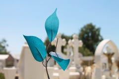 Życie i śmierć kontrast fotografia stock