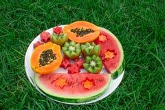 1 życie wciąż Owoc w talerzu na trawie Kiwi, arbuz, melonowiec zdjęcie royalty free