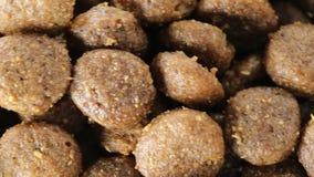 Życiorys jedzenie dla psów zbiory