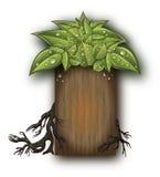 życiorys korzeni drzewa drewno royalty ilustracja