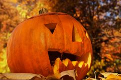 Życzliwa roześmiana Halloweenowa bania Obrazy Royalty Free