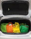 życzliwy eco bagażnik Fotografia Royalty Free