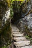 Życzy kroki przy Blarney kasztelem obrazy stock