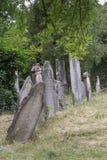 żydowski cmentarz Obrazy Royalty Free
