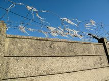 Żyletki ochrony druciana ochrona na betonowej ścianie fotografia stock