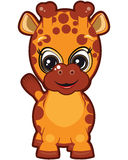 żyrafa trochę Zdjęcie Royalty Free