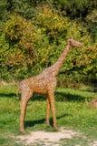 żyrafy abstrakcjonistyczna słoma Obrazy Stock