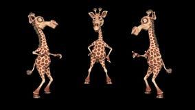 Żyrafy 3D zabawy charakter 2 Wideo pętli na tle na Alfa kanale i - ilustracji