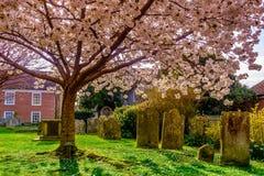 Żyto Cemetery-4 zdjęcie stock