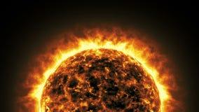 Żywa słońce animacja 02 zbiory