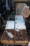 Żywi ślimaczki sprzedający jako jedzenie na Saloniki zieleni i jedzenie wprowadzać na rynek Ślimaczki są pospolitym naczyniem zdjęcie royalty free