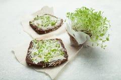 Żywienioniowy jedzenie dla ciężarów zdrowie od warzywa i straty kiełkuje, mikro zielenie zdjęcie stock