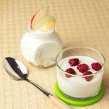 żywienioniowy jedzenie Naturalny domowy nabiał Owocowy jogurt z fres obrazy royalty free