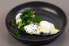 Żywienioniowy proteinowy omlet fotografia stock