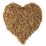 żywienioniowy włókna zdrowie serce Fotografia Stock