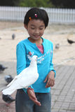 żywieniowy dziecko gołąb Fotografia Stock