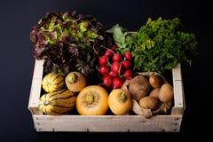Żywności organicznej pojęcia asortymentu warzywa w drewnianej skrzynce na b Obraz Royalty Free