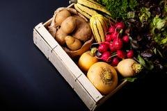Żywności organicznej pojęcia asortymentu warzywa w drewnianej skrzynce na b Fotografia Royalty Free