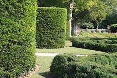 Żywopłotów ogródy zdjęcia royalty free