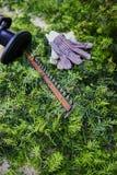 Żywopłot drobiażdżarka, rękawiczki i zieleni krzaków ścinki, Fotografia Royalty Free