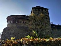 Żywopłot przed Vaduz kasztelem, Liechtenstein zdjęcie royalty free