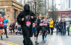 Żywotność Duży Przyrodni maraton w Londyn obrazy royalty free