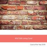 Żywy koral, kolor rok - ściana z cegieł zdjęcia stock