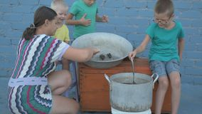 Żywy rakowy złapany w rzece gotuje w arge aluminiowej niecce w na wolnym powietrzu Kobieta stawia koperu w rondlu i słonej wodzie zdjęcie wideo