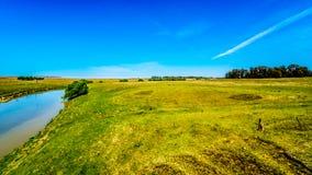 Żyzna ziemia uprawna otacza Klipriver blisko miasteczka Standarton w Mpumalanga obraz royalty free