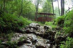 Άβυσσος διαβόλου, ξύλινη γέφυρα - Basovizza - Τεργέστη - Ιταλία στοκ εικόνα με δικαίωμα ελεύθερης χρήσης