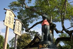 Άγαλμα αλεπούδων στη λάρνακα Fushimi Inari - Κιότο, Ιαπωνία Στοκ Φωτογραφία