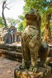 Άγαλμα λιονταριών στον παλαιό antient ναό TA Prohm σε Angkor Wat σύνθετο, Καμπότζη Στοκ φωτογραφίες με δικαίωμα ελεύθερης χρήσης