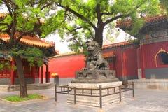 Άγαλμα λιονταριών στο ναό λάμα Yonghegong, Πεκίνο, Κίνα στοκ φωτογραφία με δικαίωμα ελεύθερης χρήσης