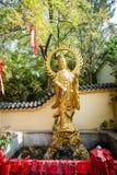 Άγαλμα της Κίνας guanyin Στοκ Εικόνες