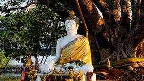 Άγαλμα του Βούδα σε Wat Phra Sri Στοκ φωτογραφία με δικαίωμα ελεύθερης χρήσης
