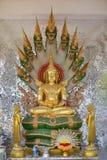Άγαλμα του Βούδα στο ashram στοκ εικόνες