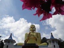 Άγαλμα του dambulla του Βούδα στη Σρι Λάνκα στοκ φωτογραφία με δικαίωμα ελεύθερης χρήσης