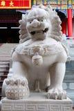 Άγαλμα Singha στον κινεζικό ναό Στοκ Εικόνες