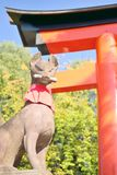Άγαλμα αλεπούδων στη λάρνακα Fushimi Inari στο Κιότο Στοκ Εικόνα