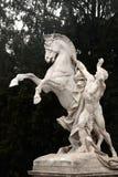 Άγαλμα αλόγων, Hofburg σύνθετο, Βιέννη, Αυστρία στοκ εικόνα