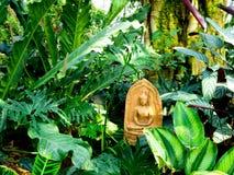 Άγαλμα του Βούδα μέσα στις εγκαταστάσεις Στοκ Εικόνες