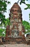 Άγαλμα του Βούδα, Ayutthaya Στοκ Εικόνα