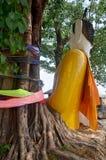 Άγαλμα του Βούδα στο δέντρο ρίζας σε Pakse Στοκ Εικόνες